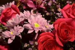 czerep bukiet z róży zakończeniem Obraz Royalty Free
