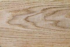 Czerep deski od naturalnego drzewa - dąb, (tło ja Fotografia Stock