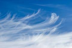 Czerep niebo z chmur pierzastych chmurami Obrazy Stock