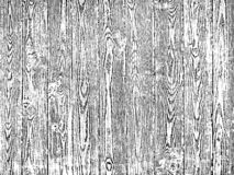 Czerep stary drzewo z kępką, faktura drewno zdjęcie royalty free