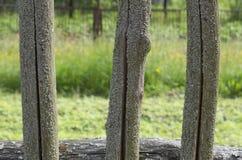 Czerep zakrywający drewniani ogrodzenia trzy czopu Zdjęcia Stock