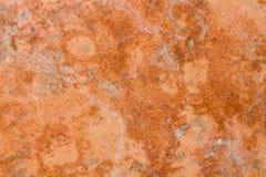 czerepu małe macro marmuru menchie Obrazy Royalty Free