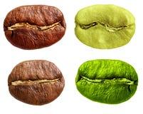 Czerni arabica i zielenieje, robusta kawowa fasola Fotografia Stock