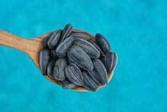 Czerni ziarna w drewnianej łyżce na błękitnym tle Obraz Royalty Free