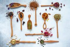 Czerni, zielenieje, owoc, chabrowa, poślubnik, dziki wzrastał, biały lotos i rooibos herbaciani w drewnianych łyżkach Obraz Stock