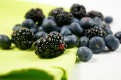 czernic czarne jagody Zdjęcie Stock