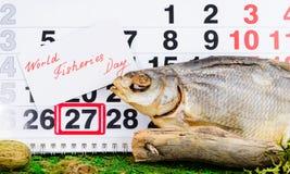 Czerwa 27 rybołówstw Światowy dzień na kalendarzu z sztokfiszem Obrazy Stock