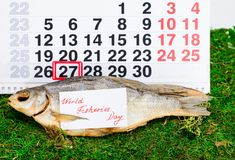 Czerwa 27 rybołówstw Światowy dzień na kalendarzu z sztokfiszem Zdjęcia Royalty Free