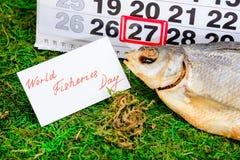Czerwa 27 rybołówstw Światowy dzień na kalendarzu z sztokfiszem Zdjęcia Stock