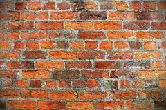 czerwień ceglasta mur tło Zdjęcia Royalty Free