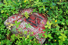 czerwień kamień Obrazy Stock