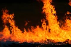 czerwień płomieni Obraz Royalty Free