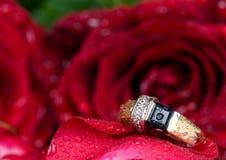 czerwień złocisty pierścionek wzrastał obrazy stock
