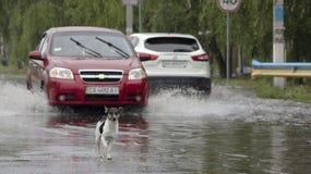 Czerwiec 21, Vyshenky Ukraina Konsekwencje prysznic Samochód bryzga przez wielkiej kałuży na zalewającej ulicie Fotografia Royalty Free