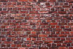czerwieni ceglana stara ściana Zdjęcie Stock