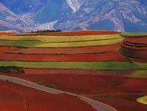 czerwieni sucha ziemia Yunnan Zdjęcie Royalty Free