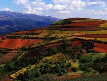 czerwieni sucha ziemia Yunnan Obrazy Royalty Free