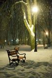 Czerwona ławka w parku fotografia stock
