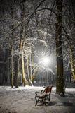 Czerwona ławka w parku obraz stock