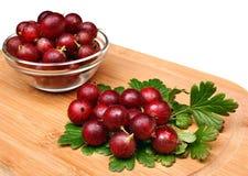 Czerwona agrestowa owoc Zdjęcia Stock