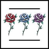 Czerwona błękit purpur róża Kwitnie Kwitnącą ikony ilustrację ilustracja wektor