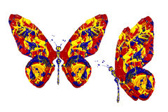Czerwona błękitna żółta farba zrobił motyla setowi Obraz Royalty Free
