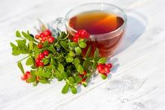 Czerwona borówka i czarne jagody z herbatą na drewnianym tle. Ostrość na jagodach fotografia stock