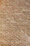 czerwona brickwall tekstura Fotografia Royalty Free