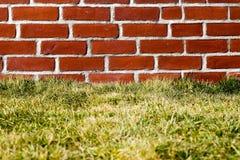 Czerwona cegła z trawą Zdjęcia Royalty Free