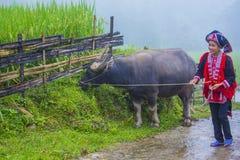 Czerwona Dao mniejszość etniczna w Wietnam zdjęcia stock