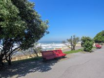 Czerwona drewniana ławka pod zielonym drzewnym cieniem z oszałamiająco oceanu i niebieskiego nieba tłem, Porto, Portugalia obrazy stock
