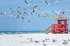 Czerwona drewniana ratownik buda na pustej ranek plaży zdjęcia royalty free