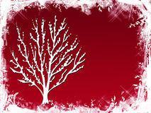 czerwona drzewna zimy. Obraz Royalty Free