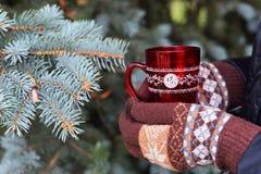 Czerwona filiżanka i brown rękawicy Zdjęcie Royalty Free