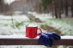 Czerwona filiżanka na śnieżnym moscie w zima parku Zdjęcia Royalty Free
