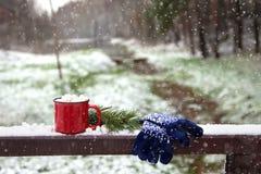 Czerwona filiżanka z marshmallow na śnieżnym moscie w zima parku Obrazy Stock