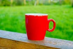 Czerwona filiżanka z ziołową herbatą Zdjęcia Royalty Free