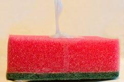 czerwona gąbka Zdjęcia Stock