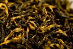 czerwona herbata Fotografia Royalty Free