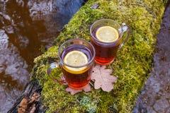 Czerwona herbata z cytryn? w szklanym kubku na naturze Na drzewie z mech nad rzek? fotografia royalty free