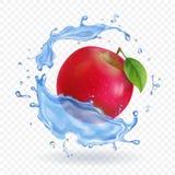 Czerwona jabłczana realistyczna owoc w wodnej pluśnięcie wektoru ilustraci Obraz Royalty Free