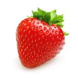 Czerwona jagodowa truskawka odizolowywająca zdjęcie royalty free