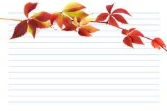Czerwona jesieni gałąź winogrona opuszcza na notatnika papierze Obraz Stock