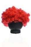 Czerwona Kędzierzawa błazen peruka zdjęcia royalty free