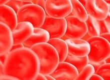 Czerwona komórka krwi Fotografia Stock