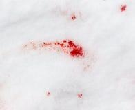 Czerwona krew na śniegu Zdjęcie Royalty Free