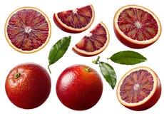 Czerwona krwionośna pomarańcze pokrajać set odizolowywa i opuszcza na białym backgro Zdjęcie Stock