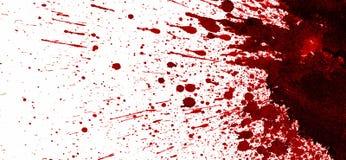 Czerwona krwionośna plama na bielu Fotografia Royalty Free