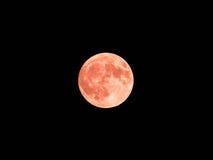 Czerwona księżyc Obrazy Royalty Free