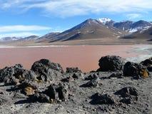 Czerwona laguna w Boliwia Zdjęcia Stock